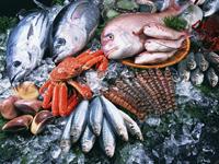 魚介は魚市場へ直接、当日買い付け